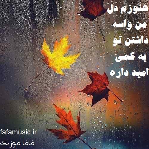 سرد بود ماهان بهرام خان